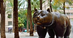 gato-raval-botero